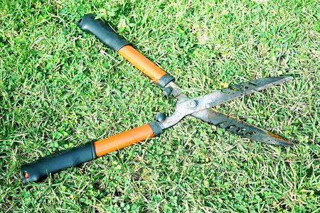 Grass  shears on the green grass