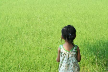 Asian child girl playing near rice field
