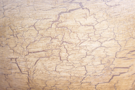 Cracked patterns on pottery for texture or background