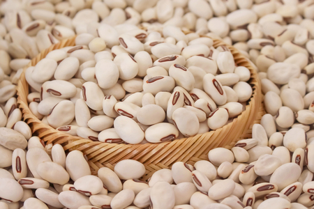 Close up jack beans or canavalia ensiformis seeds nature texture for background