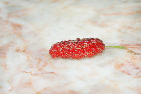 Ripe red mulberry fruits on marble table Stok Fotoğraf