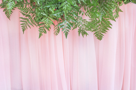 Colorful ornamental ferns leaf patterns group on light pink  curtains texture for background