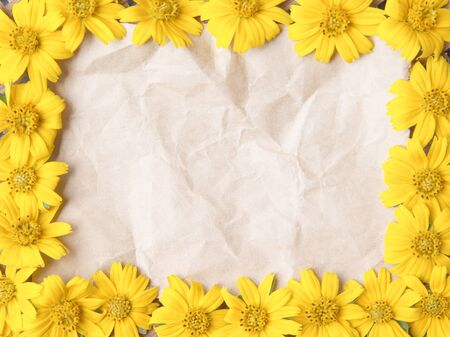 Old blank brown grunge  wrinkle  paper texture and colorful flower yellow petal blooming frame or  sweet singapore  daisy texture top view patterns for natural background, copy space