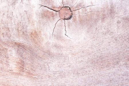 Wooden old patterns natural texture with eye and cracked abstract for background