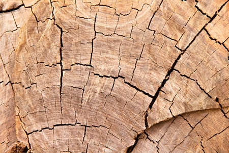 Brown wood broad wall texture abstract isolated on white background