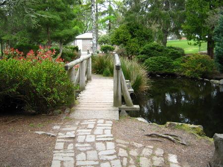 Path and bridge