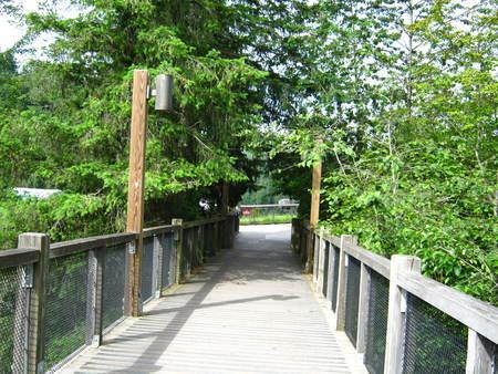 bridge to lookout Фото со стока