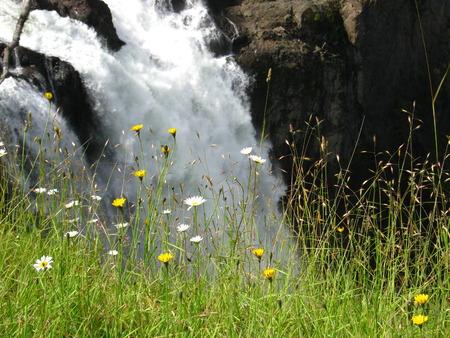 waterfall close-up Фото со стока