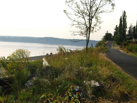 beach road and hill Фото со стока
