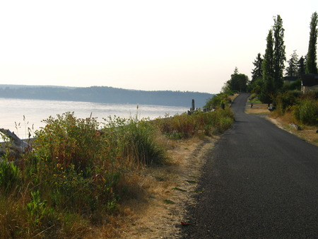beach road with morning light