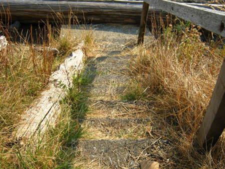 Path to beach with rail Фото со стока