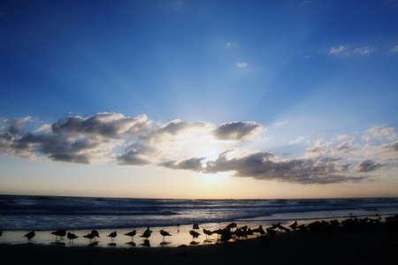 the sun rises over the beautiful Atlantic Ocean in Daytona Beach, Florida
