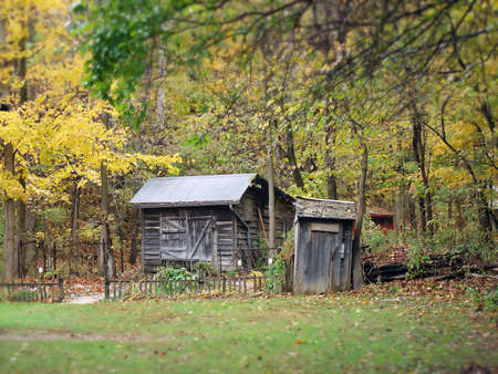 an old abandoned house and outhouse in the woods                                   photo