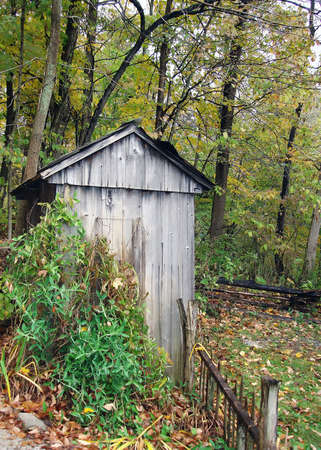 outhouse: an old abandoned outhouse in the woods                               Stock Photo