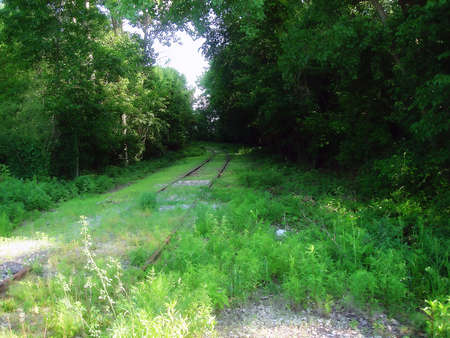 old, train tracks that are no onger used, with overgrown grass