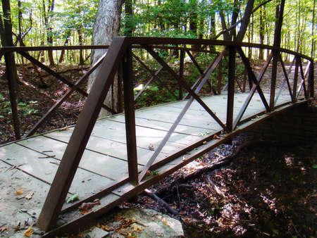 un ponte nei boschi
