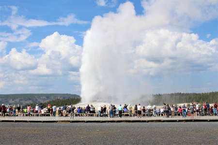 Old Faithful erupts on a beautiful summer day in front of a crowd of onlookers