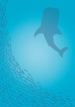 whale shark: Whale shark and many fish