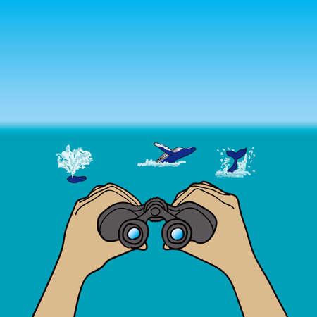 watching: Whale watching