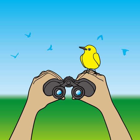 watching: Bird watching