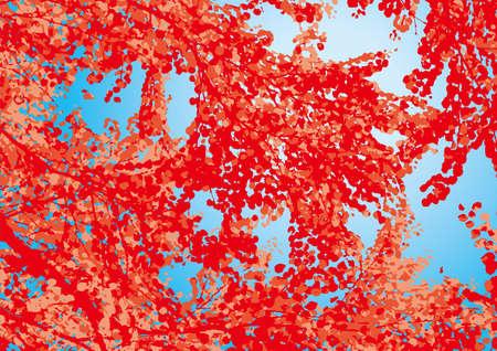 summer trees: Leaf