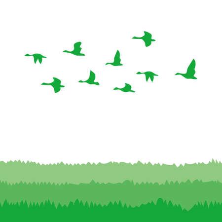 鳥の群れ 写真素材 - 67028739