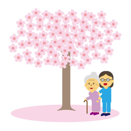 Cherry blossoms and old people