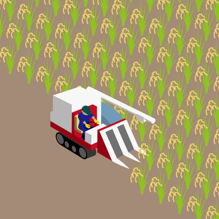 Rice reaping work in autumn vector illustration on brown background