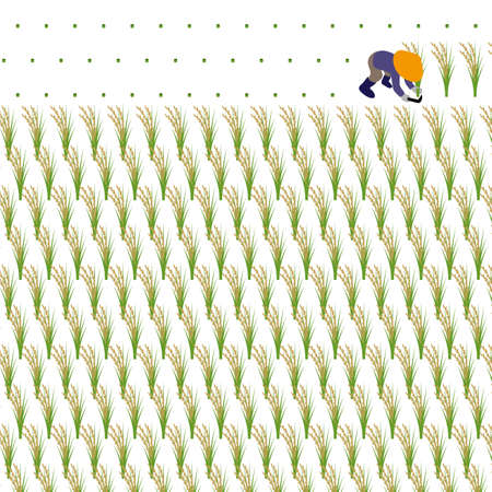 Illustration of a person reaping rice on a white background Stock Illustratie