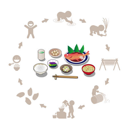 Illustration of Japanese set menu and rice production