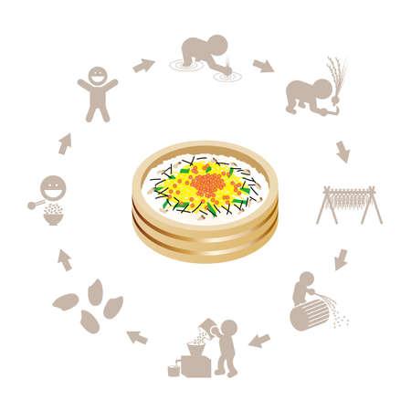 Illustration of Chirashi sushi and rice production