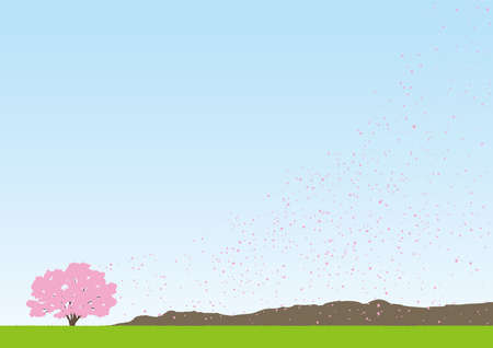 A shower of cherry blossoms Illustration