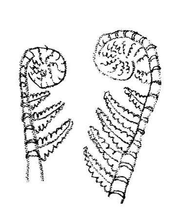 Crayon painting of ancient plants Ilustração