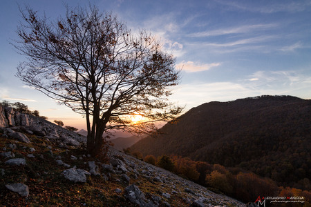 pontine: Dawn at high altitude