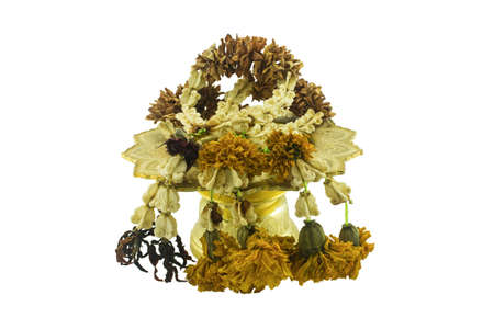 withered flower: Withered flower in tray