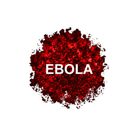 ebola: Ebola virus isolated on white background Stock Photo