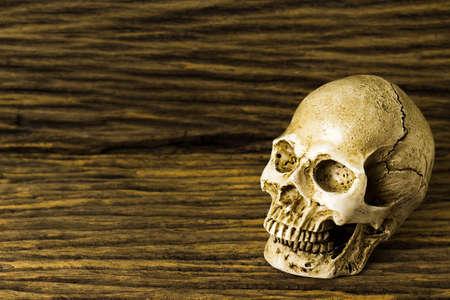 Human skull on old wood background ; still-life. Stock Photo
