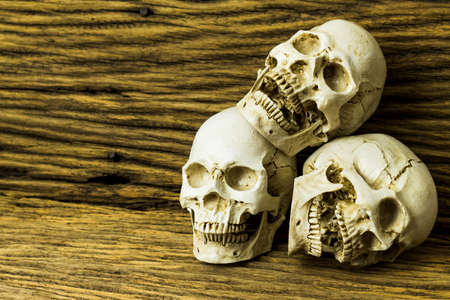 Genocides, Skull on wooden background  Still life style.
