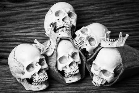 Genocides, Skull on wooden background  Still life style  Black and White.
