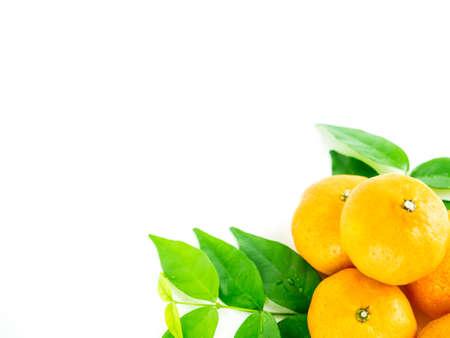 Mini orange fruit isolated on white background. Stock Photo