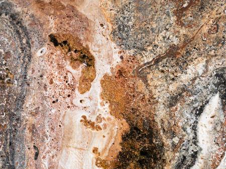 Die Oberfläche des roten Marmorsteinbeschaffenheitshintergrundes Mehr als eine Million Jahre alt. Standard-Bild