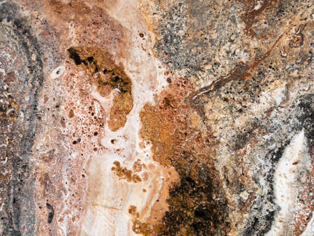 The surface of the red marble stone texture background. More then a million years old.