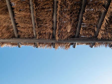 Tropical coconut palm tree leaf pavilion roof with blue sky.