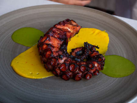 Grilled octopus on plate drizzled with olive oil, Mediterranean cuisine.