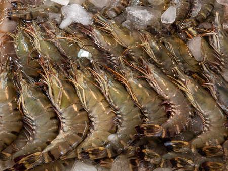 Fresh Black tiger shrimps on crushed ice at Thai seafood market.