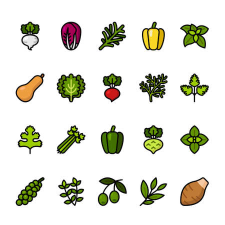 Color line icon set of Vegetables
