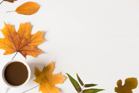 Autumn banner. Frame design for text on a white wooden background with autumn dry leaves and a cup of coffee. Autumn mood. Background for a banner with natural leaves. Flat lay, top view. Autumn flat background with coffee.
