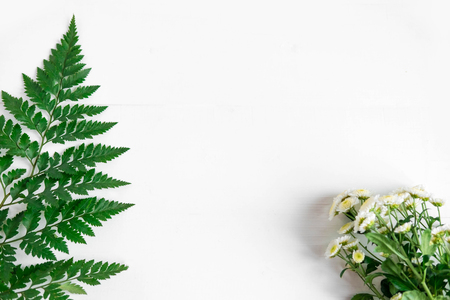 Basis for a banner with natural flowers and leaves. Frame for text with flowers and leaves. Stock Photo