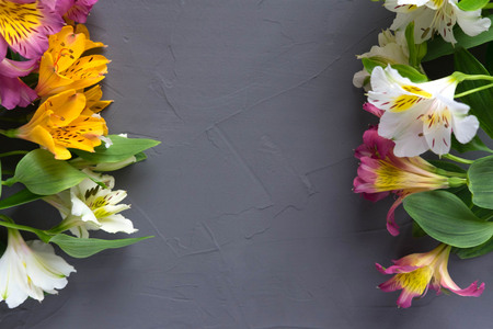 Background for text banner on a gray wooden background with white, yellow, pink flowers. Blank, frame for text. Greeting card design with flowers. View from above