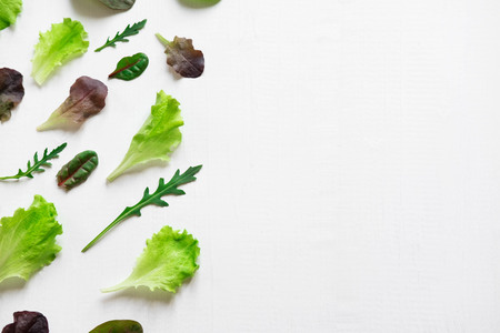 Pattern with lettuce for the background on the site. Salad greens and dietary products. Proper nutrition and vegetarianism.
